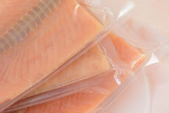 Thawing frozen salmon fillets royalty free stock photography