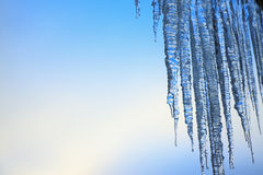 Thawing icicles Royalty Free Stock Photography