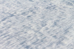 The thawing snow in the spring Stock Photos