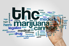 THC word cloud. Concept on grey background Stock Photography