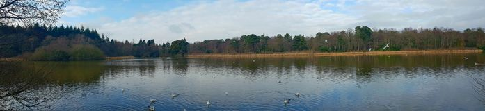 The Stover Country Park is an area of woodland park in the parish of Teigngrace, Devon