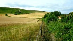 Theär den långa mannen avWilmingtonaÂkullefigurepå stupen av Windover kullenearWilmington, östliga Sussex, England arkivbilder