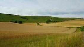 Theär den långa mannen avWilmingtonaÂkullefigurepå stupen av Windover kullenearWilmington, östliga Sussex, England royaltyfri fotografi