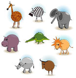 The African Animals Stock Photo