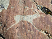 The Ancient Drawings On Rocks Altai Royalty Free Stock Photography