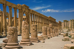 Free The Ancient Ruins Of Palmyra Stock Images - 16831044