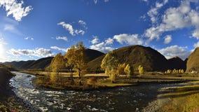 Free The Autumn Of Xinduqiao Royalty Free Stock Image - 46055036