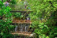 Free The Aviary At XCaret Park On The Mayan Riviera In Mexico Stock Photo - 145797820