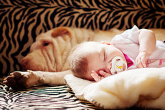 The Baby With A Dog Royalty Free Stock Image