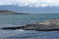 Free The Beagle Channel Separating The Main Island Of The Archipelago Of Tierra Del Fuego And Lying To The South Of The Island. Royalty Free Stock Photo - 65848755