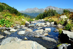 The Beautiful Landscape Of Pure Mountain Stream Royalty Free Stock Photography