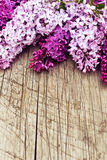 The Beautiful Lilac On A Wooden Background Stock Image