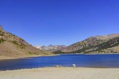 Free The Beautiful Saddlebag Lake Royalty Free Stock Image - 75648976