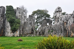 The Beautiful Stone Forest Stock Photography