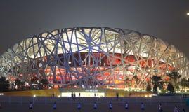 Free The Beijing National Stadium Royalty Free Stock Photo - 4978315
