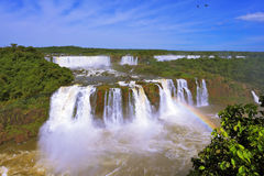 The Best-known Falls - Iguazu Stock Images