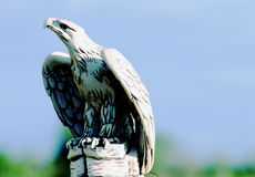 The Big Eagle Royalty Free Stock Image