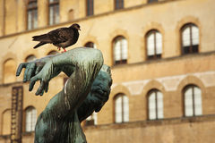 Free THE BIRD ON THE STATUE Stock Image - 64655021