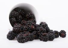 Free The Blackberry Stock Image - 2180971
