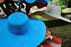 Free The Blue Hat Royalty Free Stock Photography - 52383857