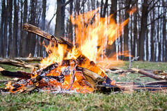 The Bonfire Royalty Free Stock Image