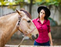 Free The Brown Horse That The Girl Strokes. Outside. Royalty Free Stock Image - 103067316
