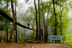 The Canopy Walk Way Stock Photo