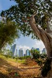 The City Under The Great Nature Royalty Free Stock Photography