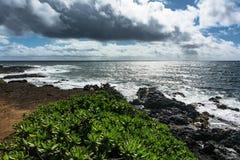 Free The Coast Along Kapaa, Kauai, Hawaii Stock Images - 130001564