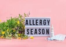 Free The Concept Combating Preventing Seasonal Allergies. Fresh Flowers Medical Mask Pills Drops Medicine Pink Background. Royalty Free Stock Photos - 188425118