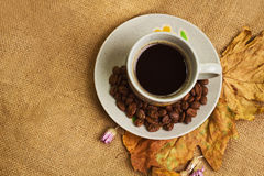 The Cup Of Coffee With Maple Leaves And Everlasting Flowers Stock Photos