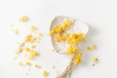 Free The Dried Herb Helichrysum On A White Table Stock Photos - 113501603