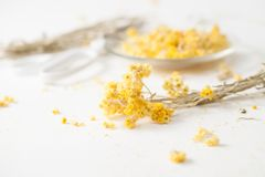 Free The Dried Herb Helichrysum On A White Table Royalty Free Stock Photo - 113501625