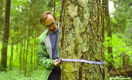 Free The Ecologist In A Forest Measuring A Tree Trunk Stock Images - 128869144
