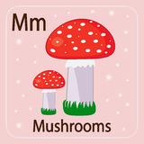The English Letter M And Mushrooms With A Red Hat Royalty Free Stock Photo