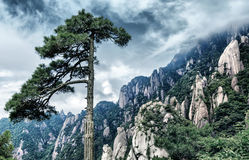The Famous Huangshan Stock Images