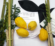The Four Species Of Sukkot. Stock Images