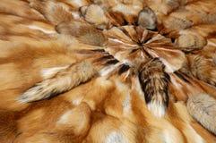 The Fox Skins Stock Image