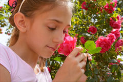 Free The Girl With Rose Royalty Free Stock Image - 31505246