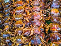The Grill Crab Royalty Free Stock Images