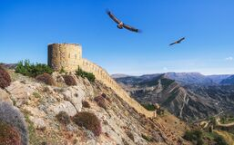 Free The Gunib Fortress Is A Historical Monument Of Dagestan. Eagles Fly Over The Old Fortress Royalty Free Stock Photos - 217915318