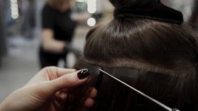 Free The Hairdresser Sticks The Artificial Hair To The Real Thing. The Process Of Hair Extension. 4K Royalty Free Stock Images - 141357099