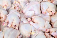 Free The Hen Is On The Butcher`s Table. Chicken Cutting Plant Stock Photo - 120171260