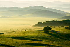 Free The Hills And Trees In The Meadow Stock Photos - 76491863