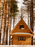 The House From Logs Stock Photography