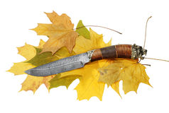 The Hunting Knife Royalty Free Stock Photo