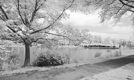 The Infrared Dreamy Scenery Royalty Free Stock Photography