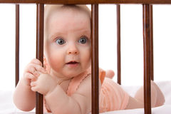 The Kid In The Crib. Stock Photography