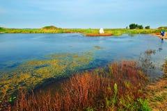 Free The Lake Royalty Free Stock Image - 44510226