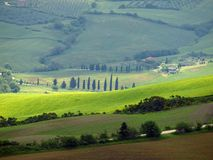 The Landscape Of The Val D Orcia.